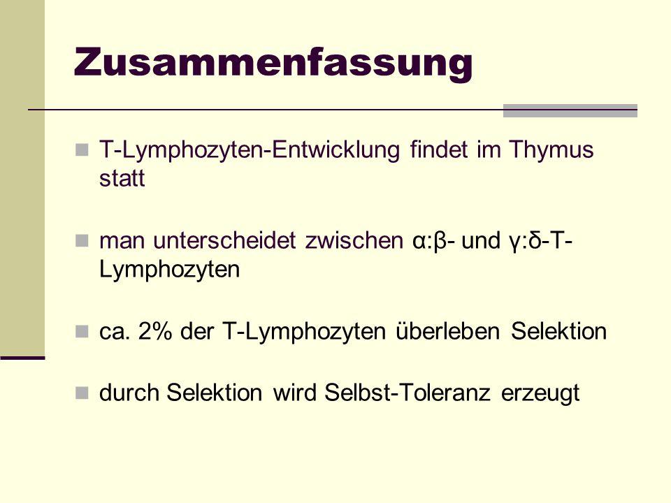 Zusammenfassung T-Lymphozyten-Entwicklung findet im Thymus statt