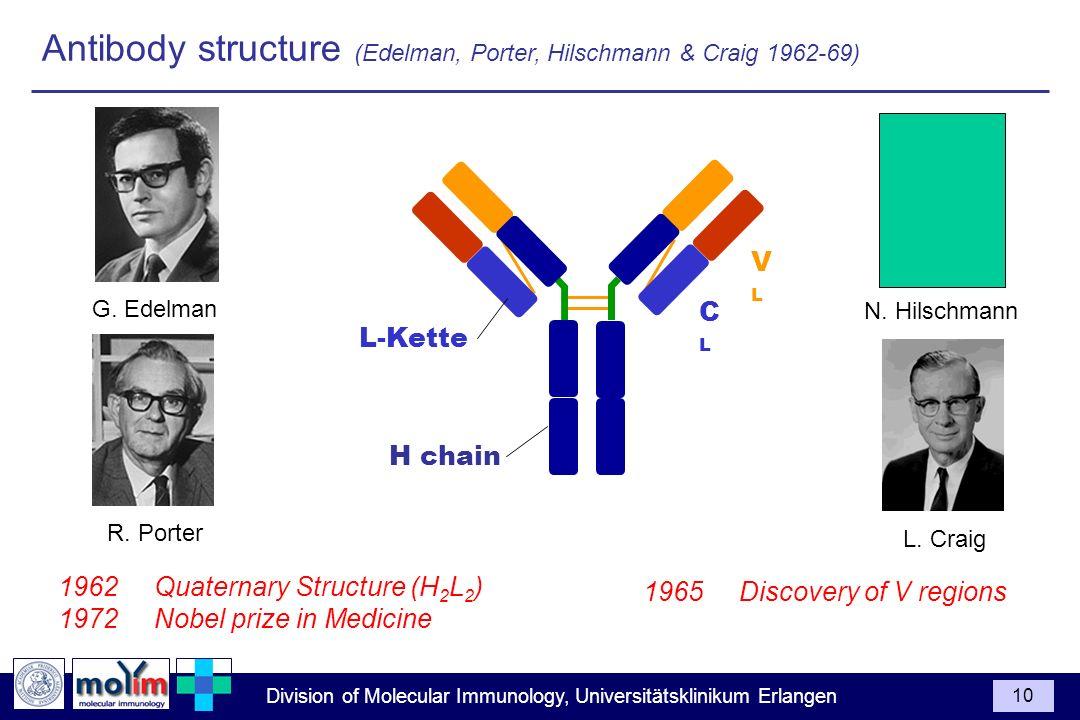 Antibody structure (Edelman, Porter, Hilschmann & Craig 1962-69)