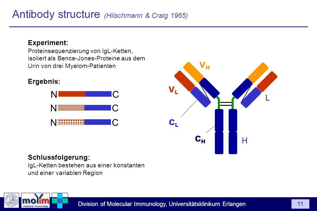 Antibody structure (Hilschmann & Craig 1965)