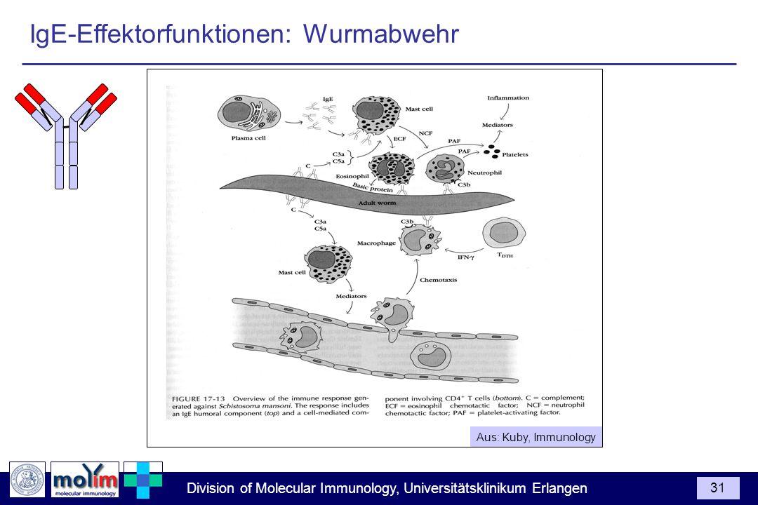 IgE-Effektorfunktionen: Wurmabwehr