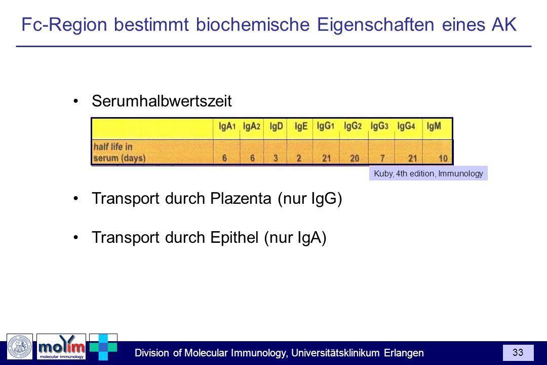 Fc-Region bestimmt biochemische Eigenschaften eines AK