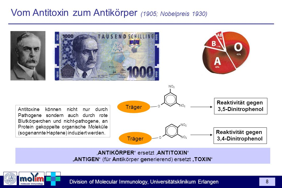 Vom Antitoxin zum Antikörper (1905; Nobelpreis 1930)