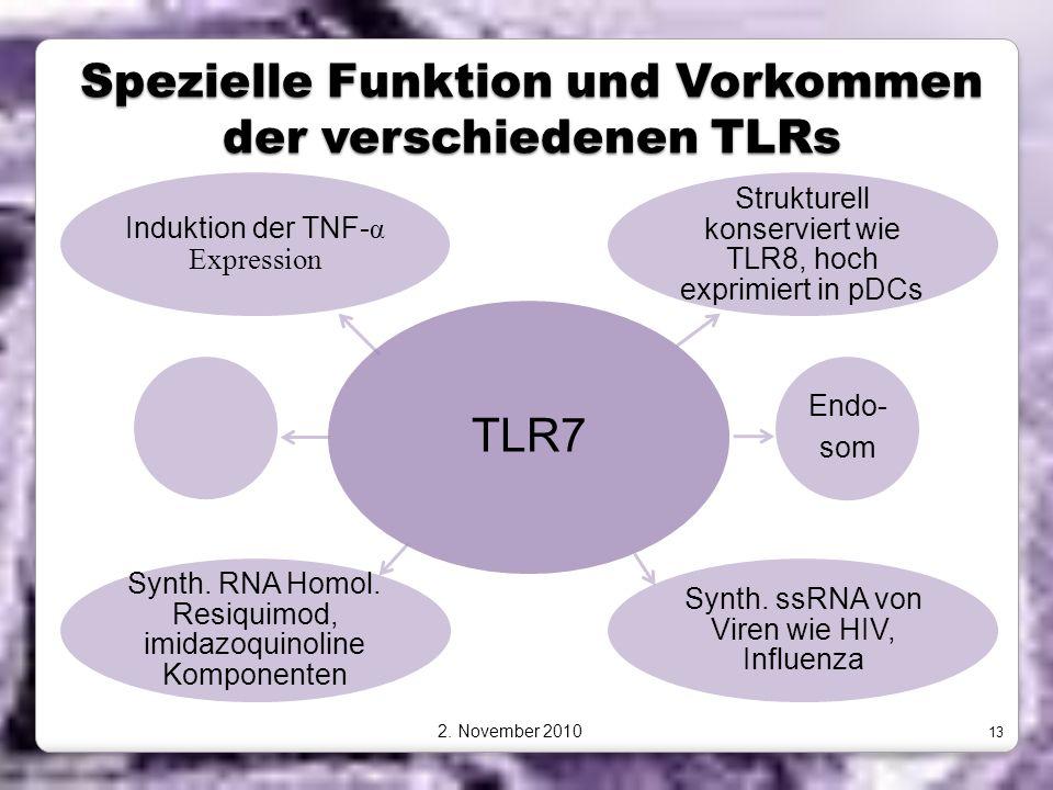 Spezielle Funktion und Vorkommen der verschiedenen TLRs