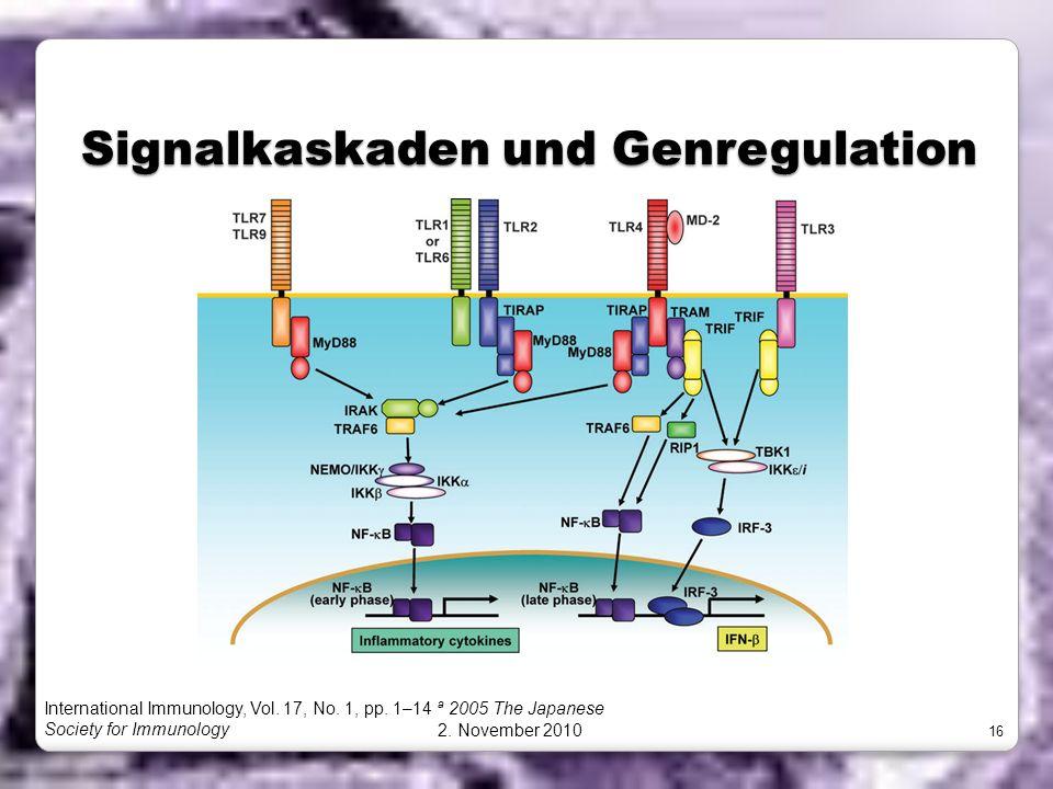 Signalkaskaden und Genregulation