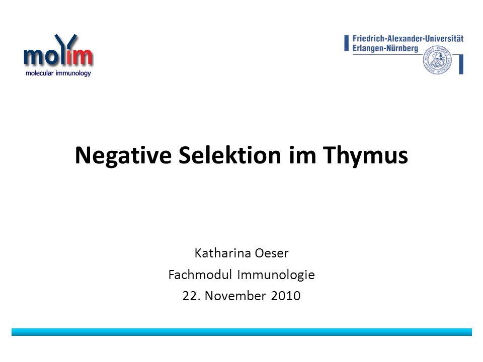 Negative Selektion im Thymus