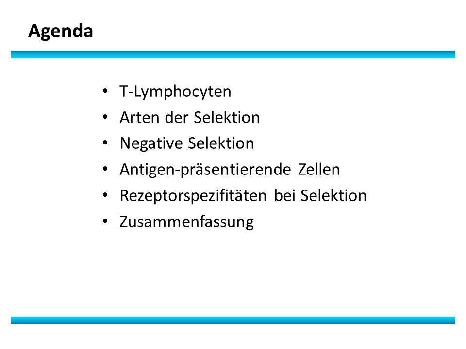 Agenda T-Lymphocyten Arten der Selektion Negative Selektion