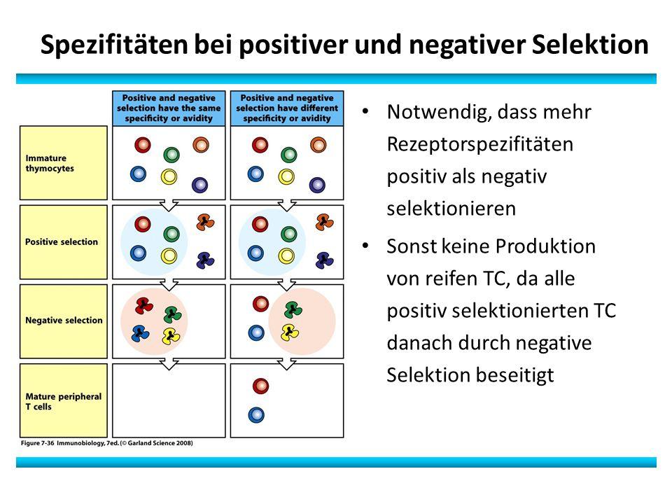 Spezifitäten bei positiver und negativer Selektion