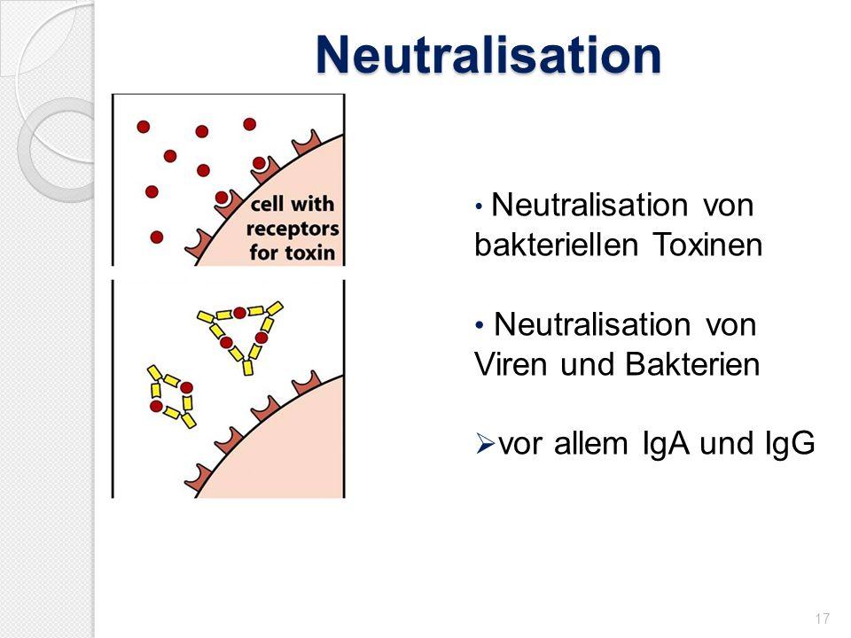 Neutralisation Neutralisation von Viren und Bakterien