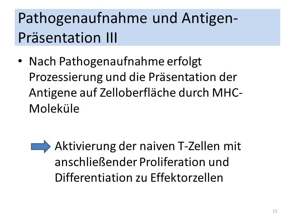 Pathogenaufnahme und Antigen-Präsentation III
