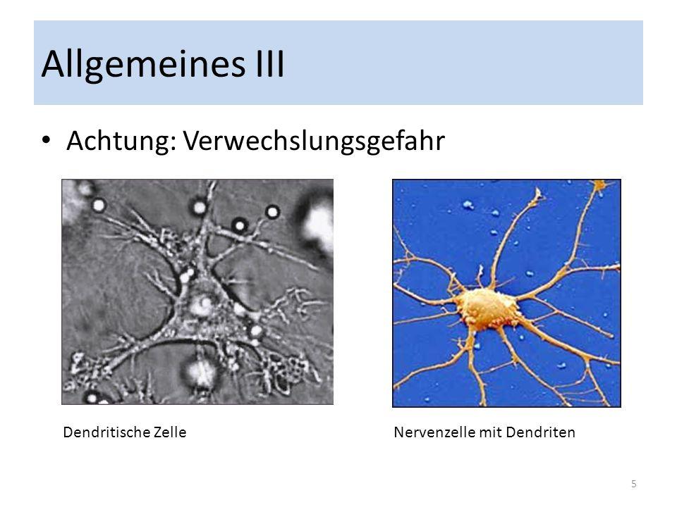 Allgemeines III Achtung: Verwechslungsgefahr Dendritische Zelle