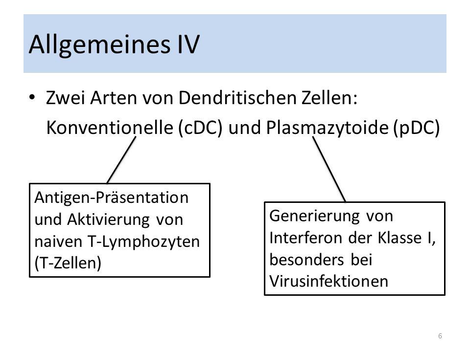 Allgemeines IV Zwei Arten von Dendritischen Zellen: