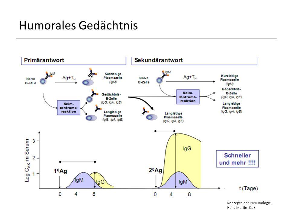 Humorales Gedächtnis Konzepte der Immunologie, Hans-Martin Jäck