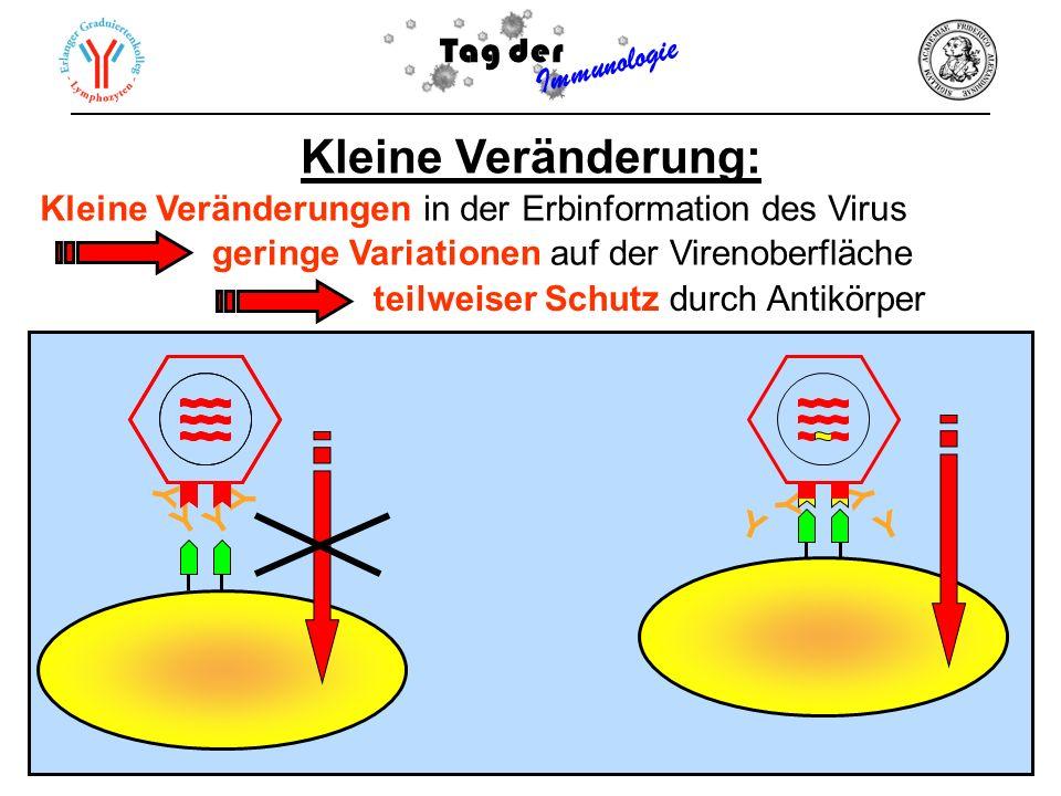 Kleine Veränderung: Tag der Immunologie