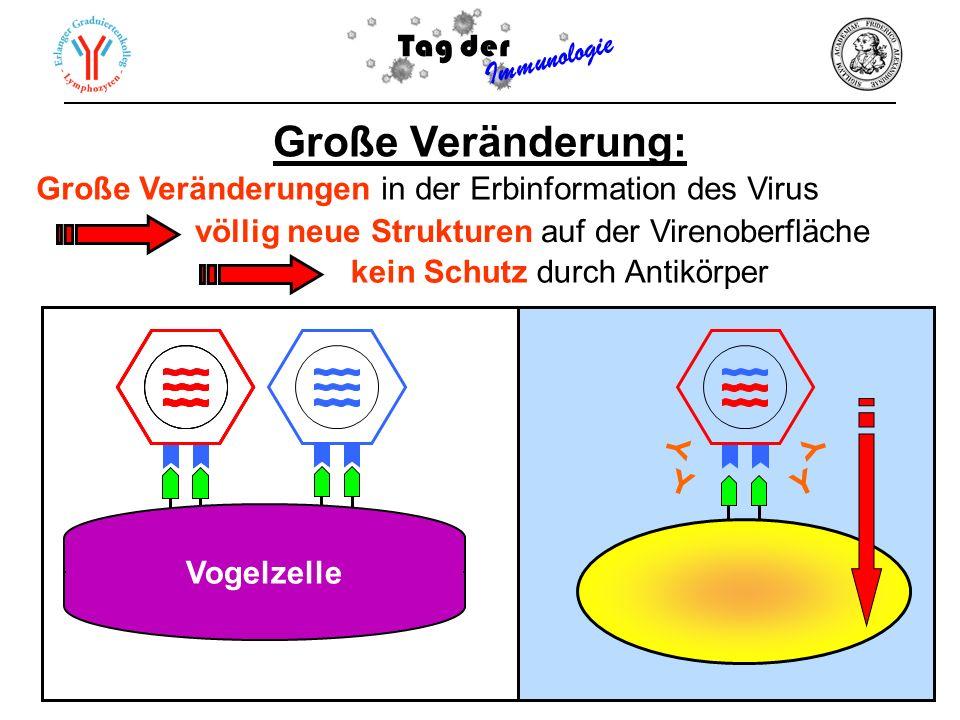 Große Veränderung: Tag der Immunologie