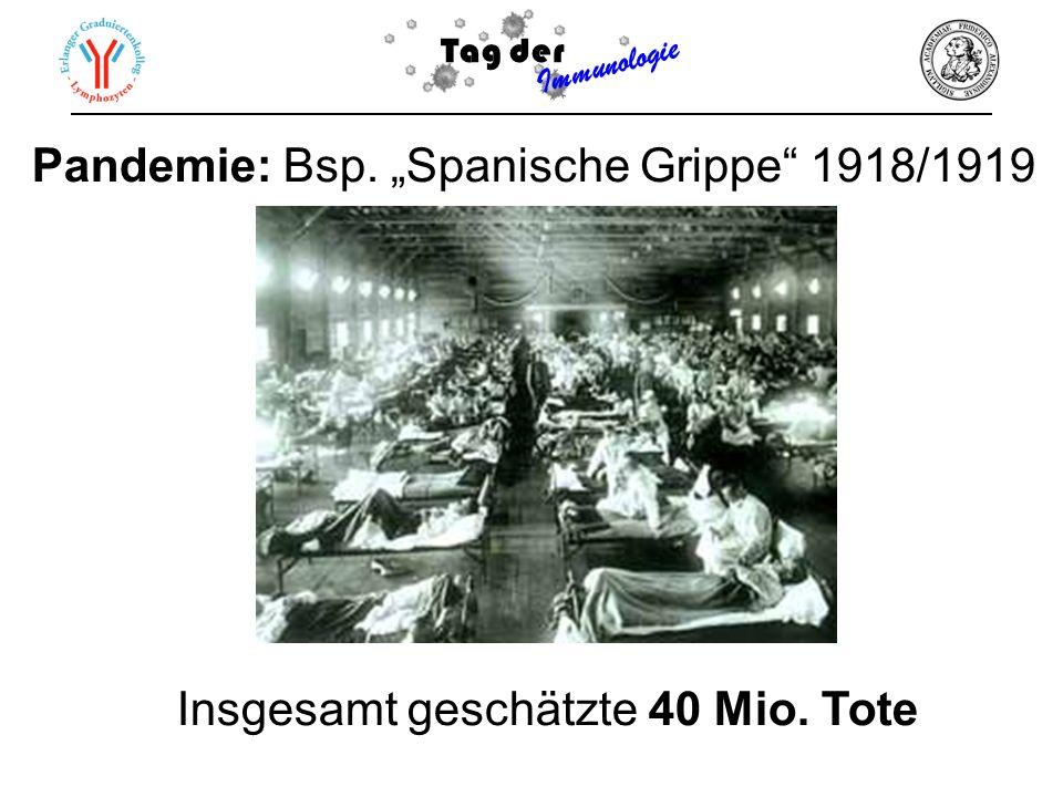 "Pandemie: Bsp. ""Spanische Grippe 1918/1919"
