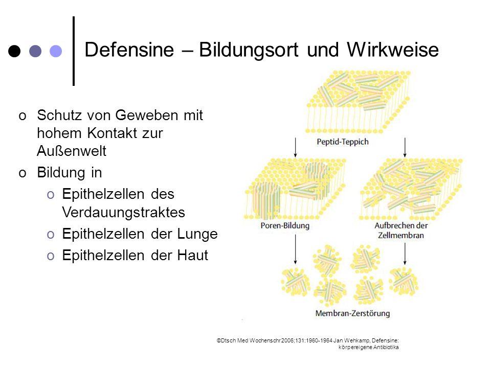 Defensine – Bildungsort und Wirkweise