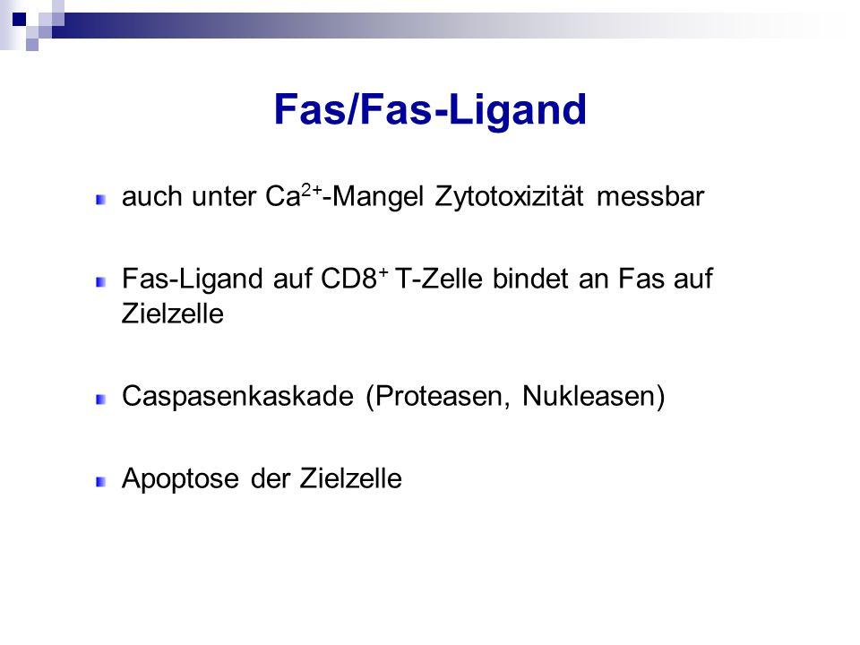 Fas/Fas-Ligand auch unter Ca2+-Mangel Zytotoxizität messbar