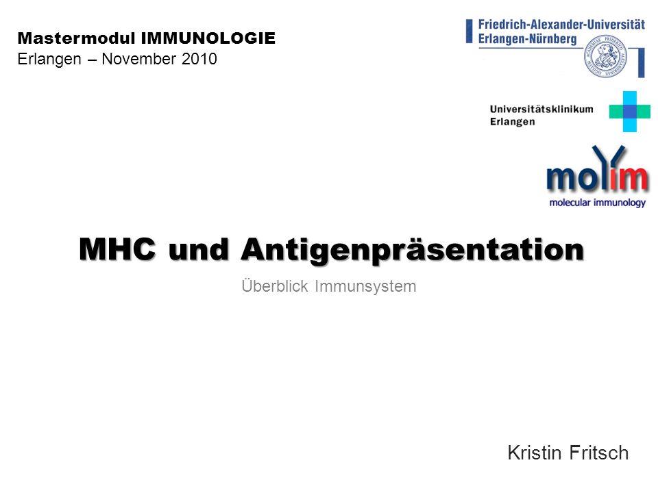 MHC und Antigenpräsentation