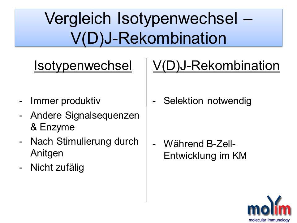 Vergleich Isotypenwechsel – V(D)J-Rekombination