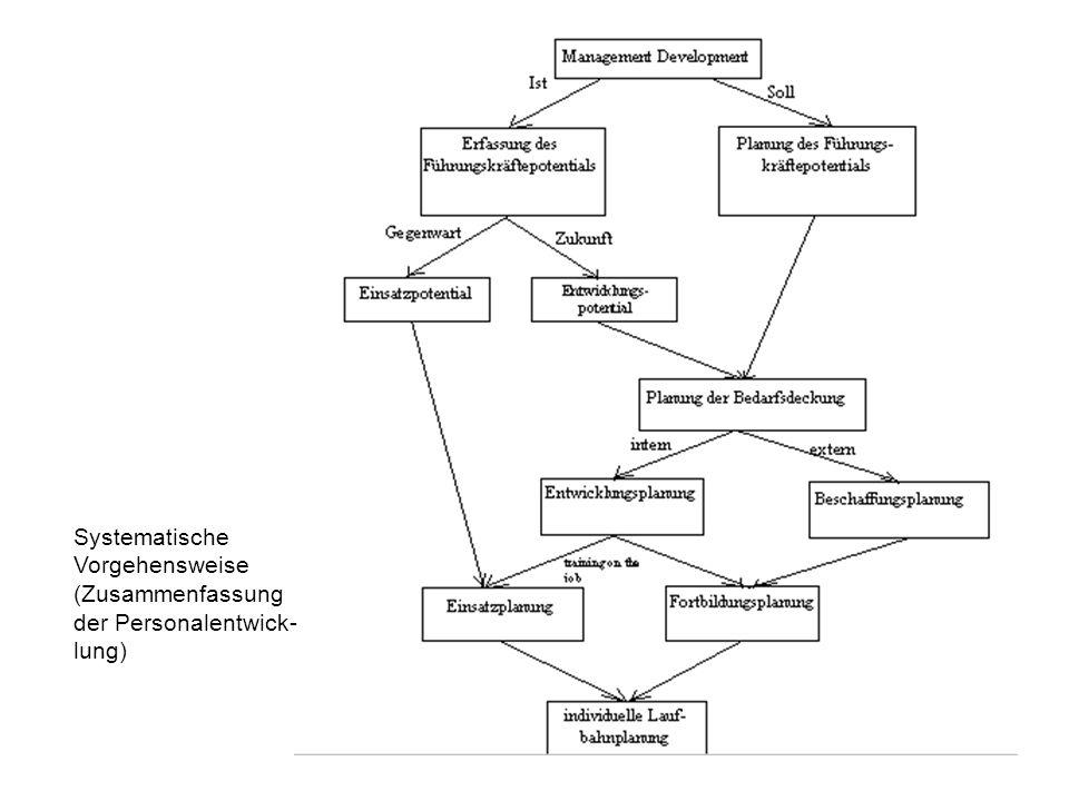 Systematische Vorgehensweise (Zusammenfassung der Personalentwick-lung)
