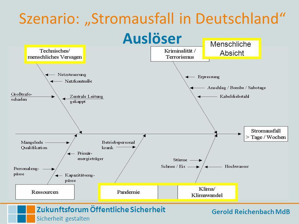 """Szenario: """"Stromausfall in Deutschland Auslöser"""