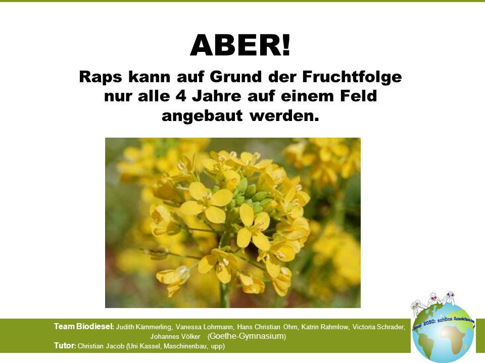 ABER! Raps kann auf Grund der Fruchtfolge nur alle 4 Jahre auf einem Feld angebaut werden.