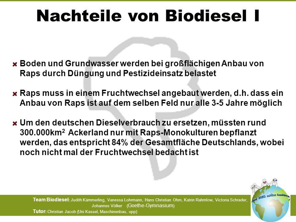 Nachteile von Biodiesel I