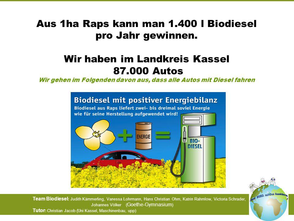 Aus 1ha Raps kann man 1. 400 l Biodiesel pro Jahr gewinnen