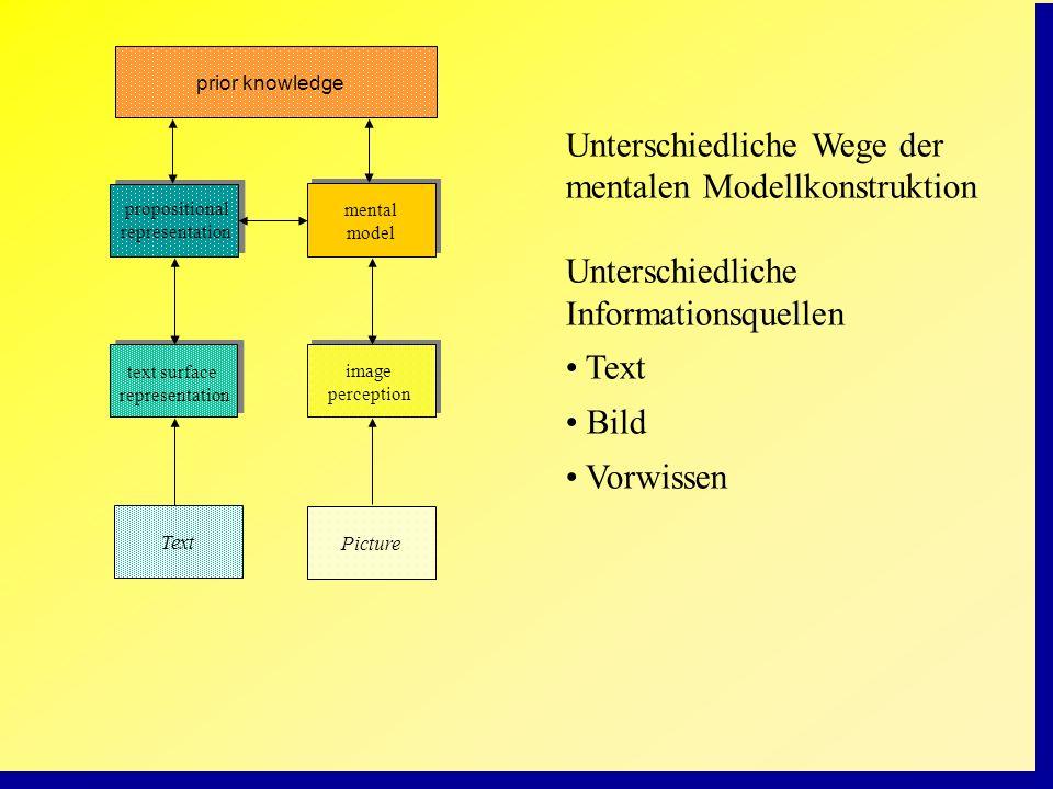 Unterschiedliche Wege der mentalen Modellkonstruktion Unterschiedliche