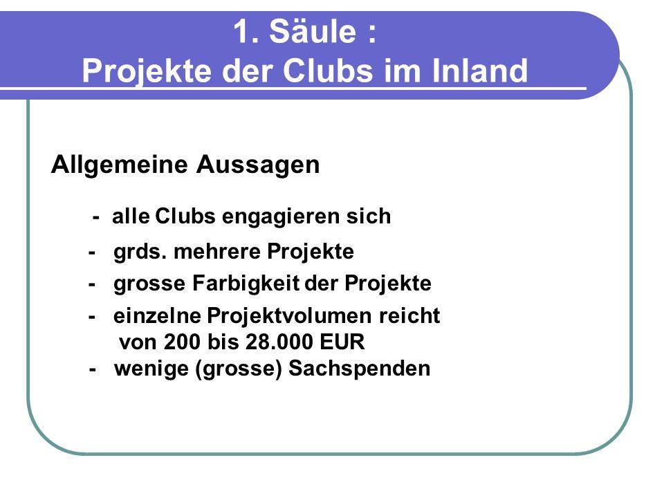 1. Säule : Projekte der Clubs im Inland