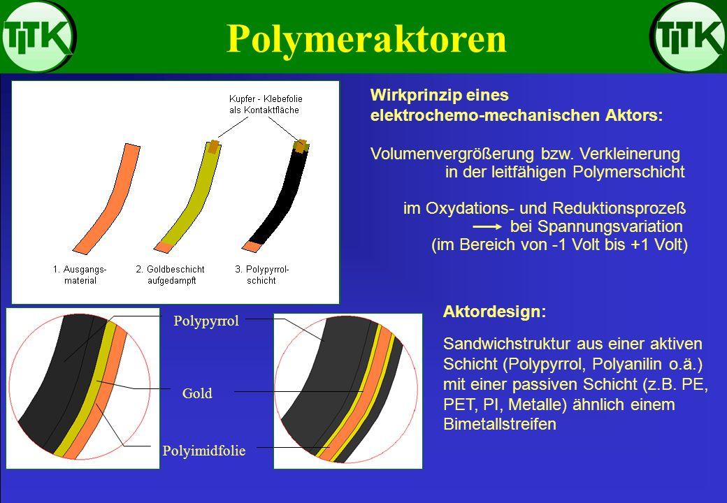 Polymeraktoren Wirkprinzip eines elektrochemo-mechanischen Aktors: