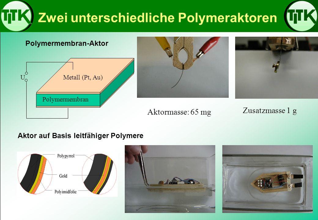 Zwei unterschiedliche Polymeraktoren