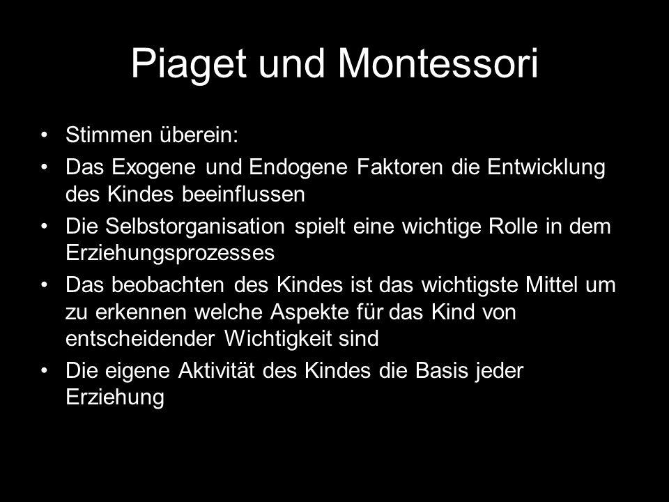 Piaget und Montessori Stimmen überein: