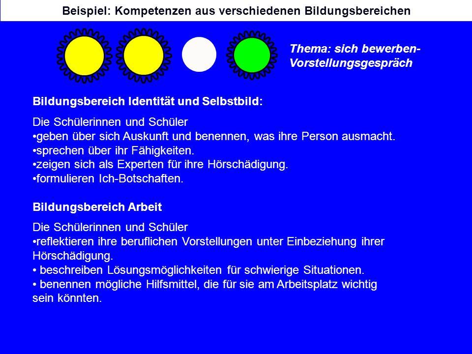 Beispiel: Kompetenzen aus verschiedenen Bildungsbereichen