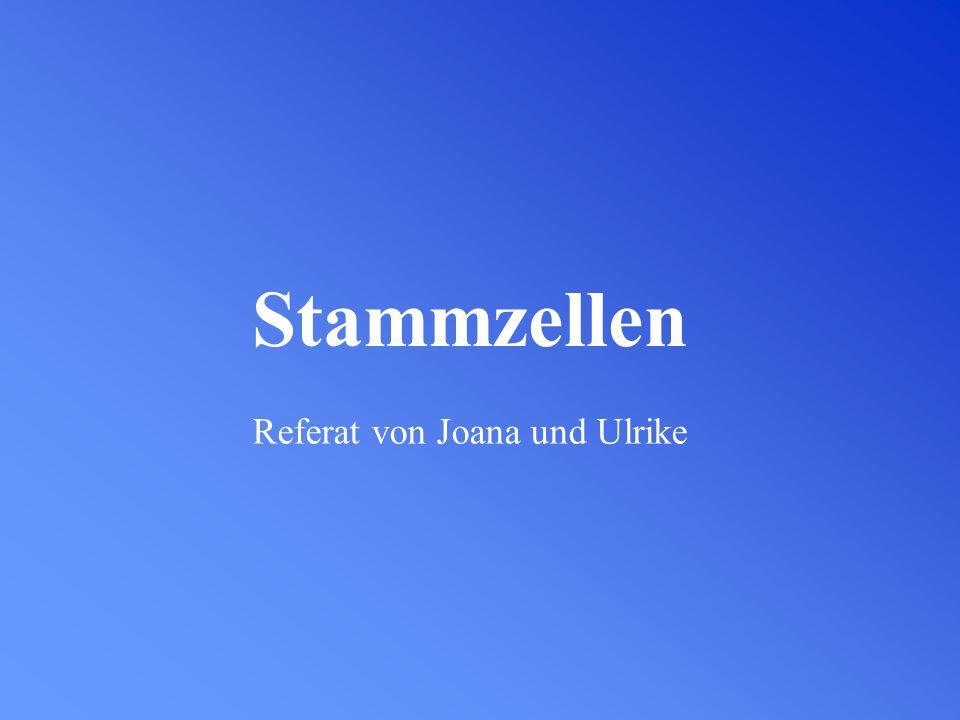 Referat von Joana und Ulrike