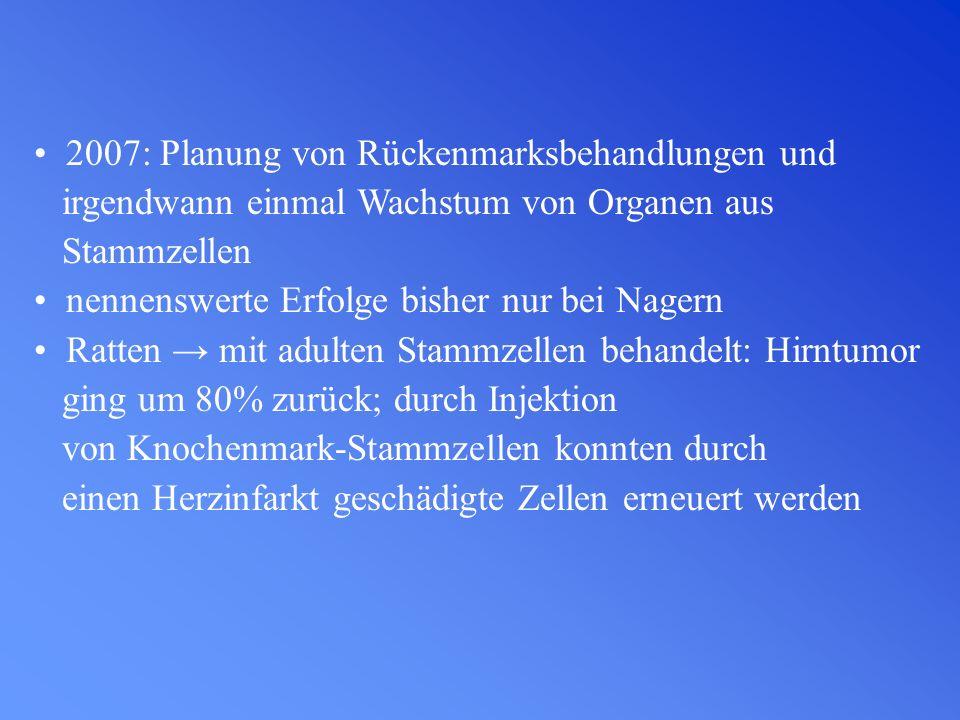 2007: Planung von Rückenmarksbehandlungen und