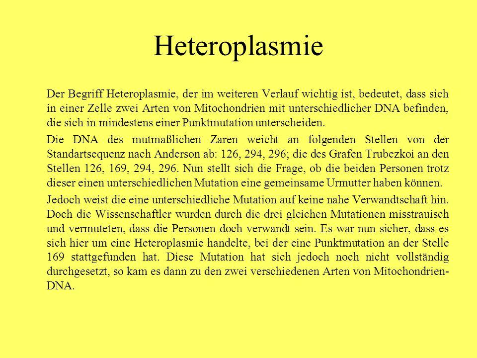 Heteroplasmie