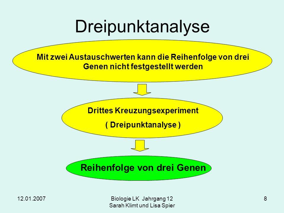 Drittes Kreuzungsexperiment Reihenfolge von drei Genen