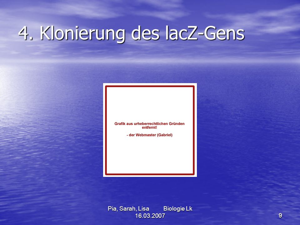 4. Klonierung des lacZ-Gens
