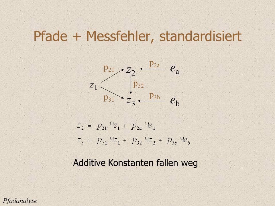 Pfade + Messfehler, standardisiert