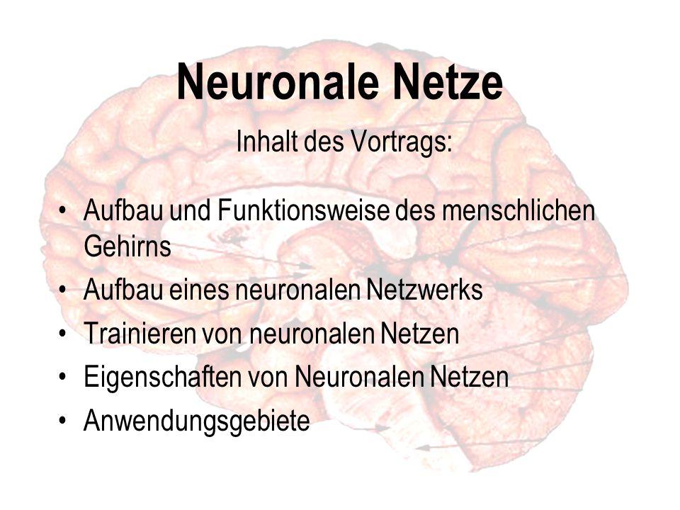 Neuronale Netze Inhalt des Vortrags: