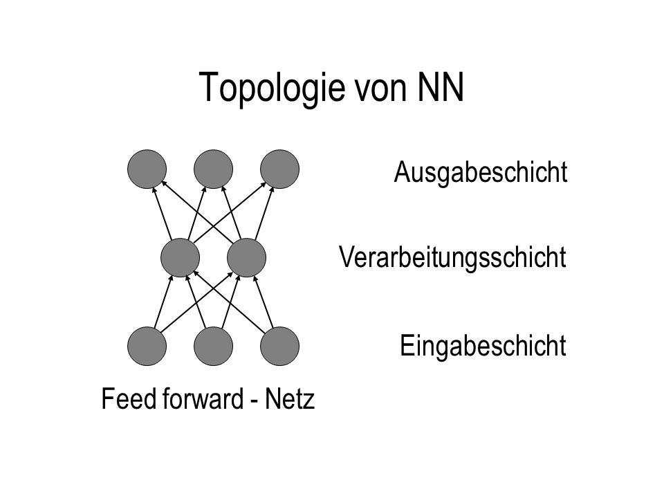 Topologie von NN Ausgabeschicht Verarbeitungsschicht Eingabeschicht