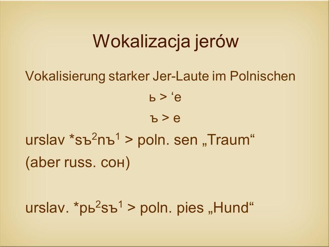 """Wokalizacja jerów urslav *sъ2nъ1 > poln. sen """"Traum"""