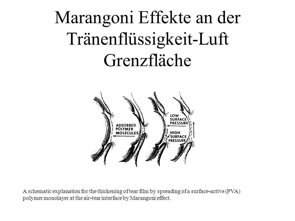 Marangoni Effekte an der Tränenflüssigkeit-Luft Grenzfläche