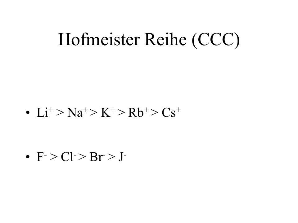 Hofmeister Reihe (CCC)