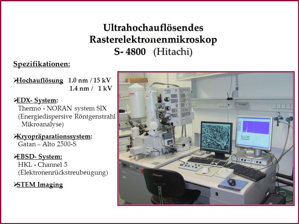 Ultrahochauflösendes Rasterelektronenmikroskop