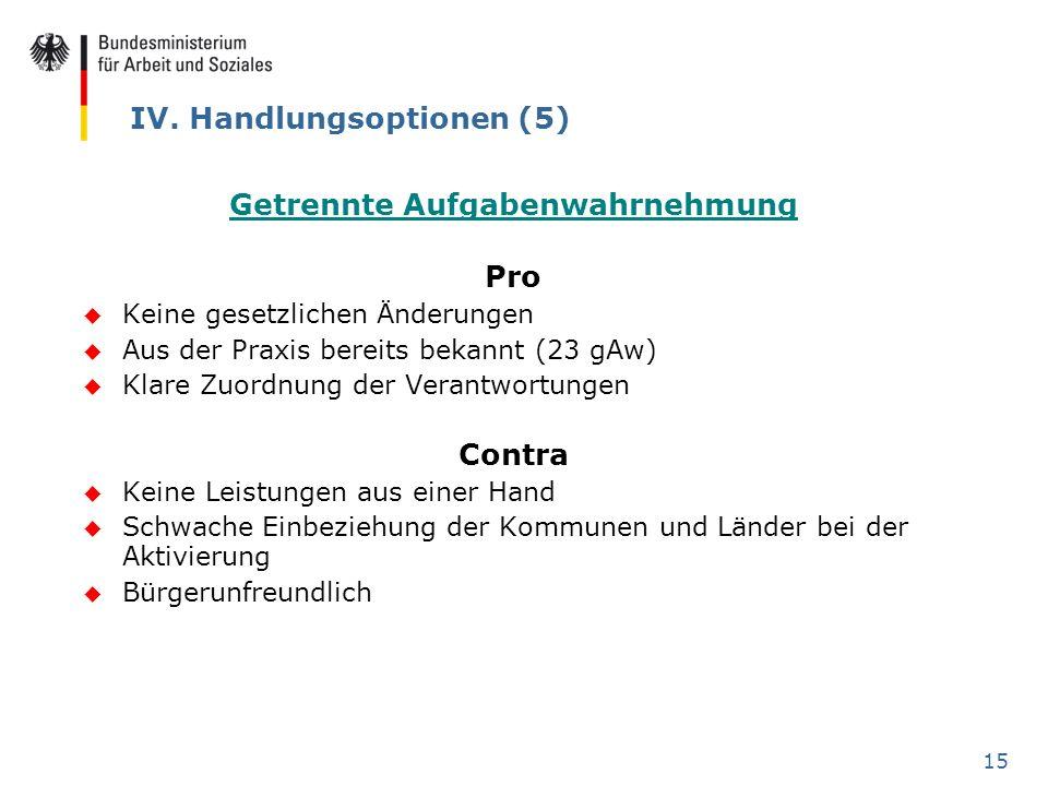 IV. Handlungsoptionen (5)