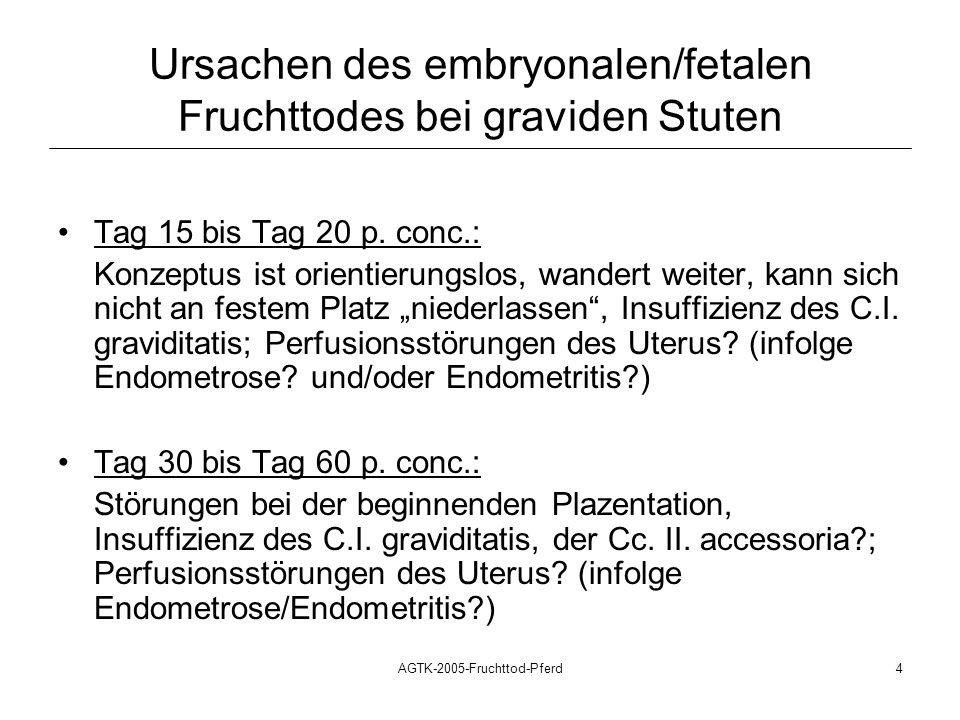 Ursachen des embryonalen/fetalen Fruchttodes bei graviden Stuten