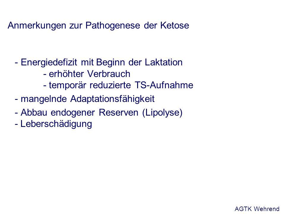 Anmerkungen zur Pathogenese der Ketose