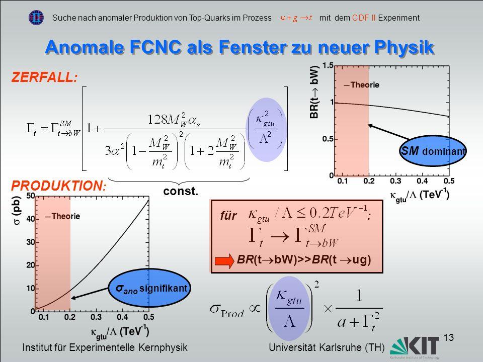 Anomale FCNC als Fenster zu neuer Physik